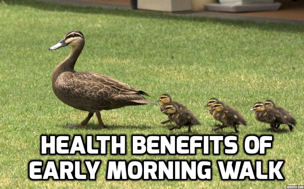 Health Benefits of Early Morning Walk