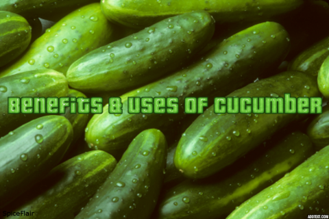 Uses Of Cucumber