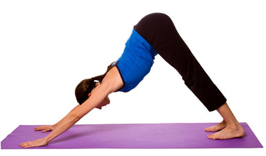 Adho Mukha Savasana Yoga Styles and Yoga Poses For Starters [Infographic]
