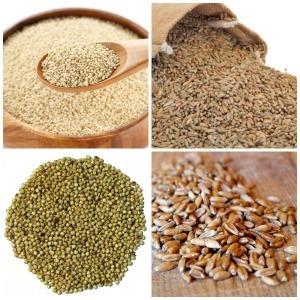 Whole grains - Quinoa - Rye - Sorghum - Spelt