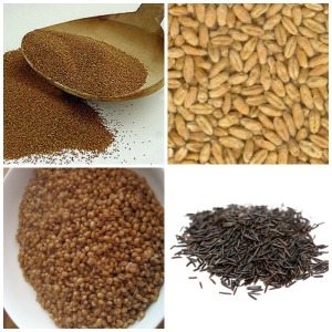 Whole grains Teff - Triticale - Wheat Berries - Wild Rice - SmallSize