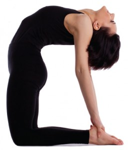 Ustrasana or the camel pose