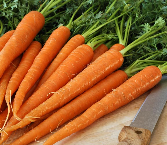 Get rid of diarrhea with carrots
