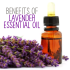 12 Amazing Benefits and Uses Of Lavender Essential Oil [Infographic]