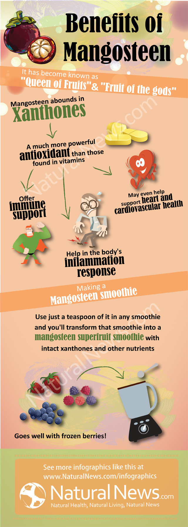 Benefits of Mangosteen