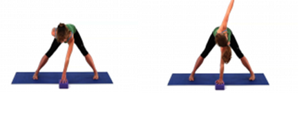 straddle forwards bend