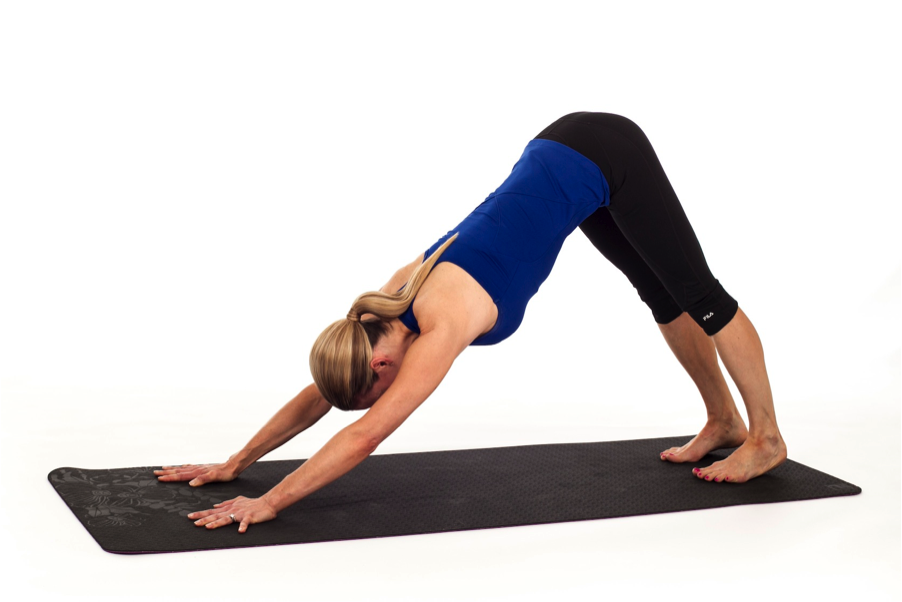 Adho mukhasvanasana or the downward facing dog pose