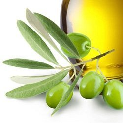 Olive leaves extract