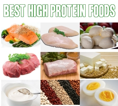 The List of the Top 10 High Protein Foods Revealed