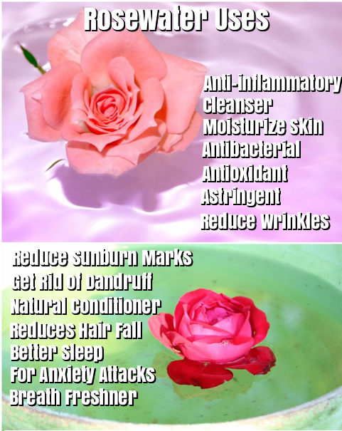 Rose water benefits and uses