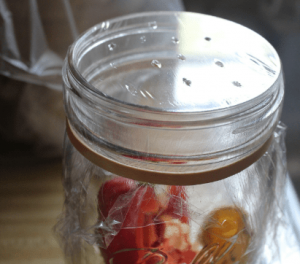 Fruit Jar Trap