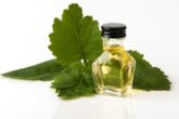 Benefits of patchouli essential oil